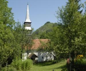 biserica-bacaia-01