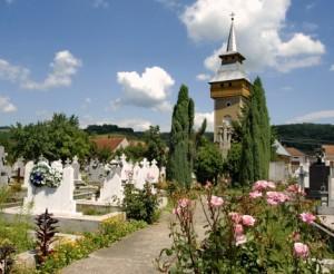 biserica-sfnicolae-02